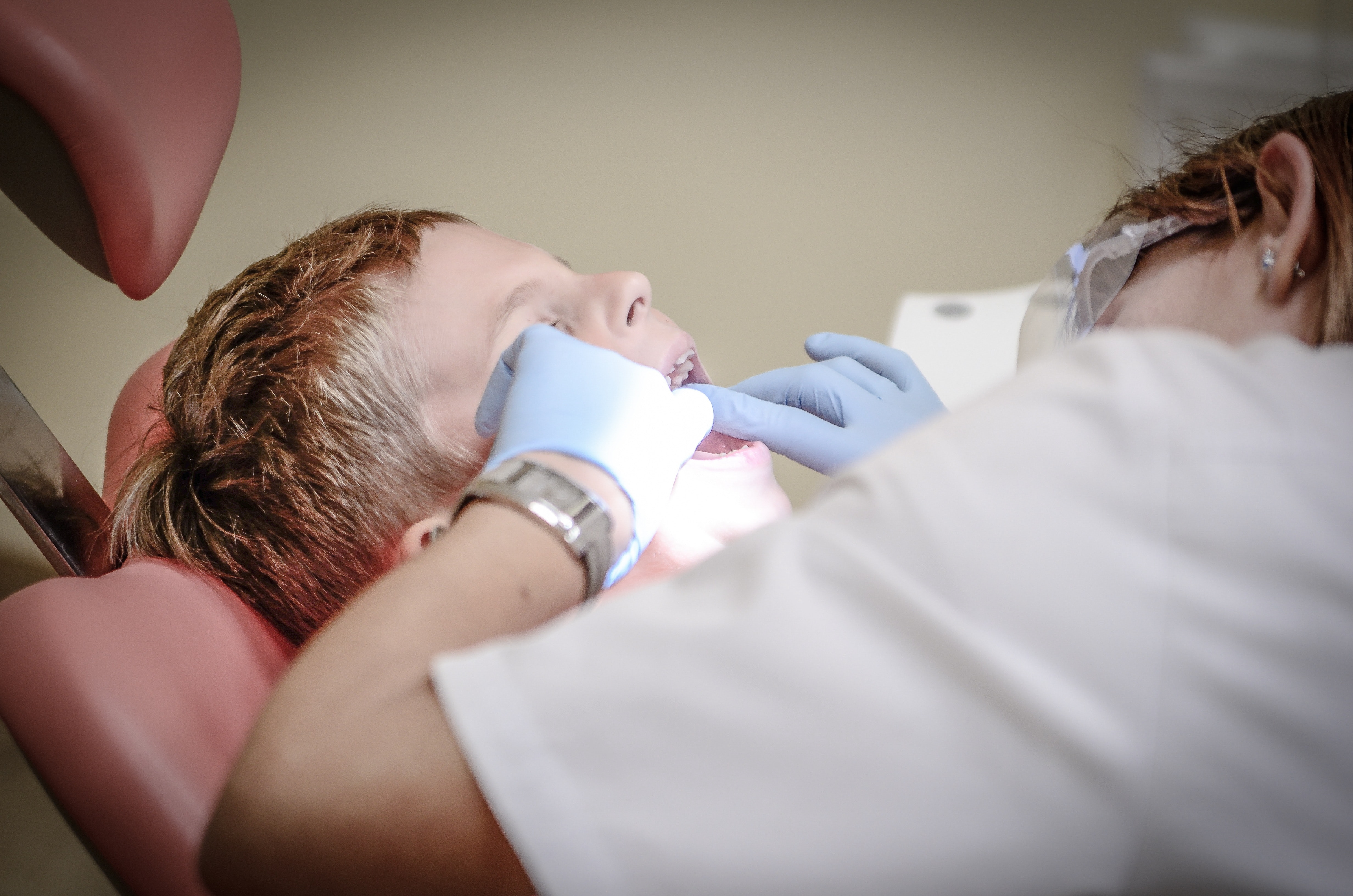 dental stem cell therapy