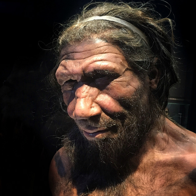 Neanderthals: Drugs, Diet & Dental Cleaning in Gilbert